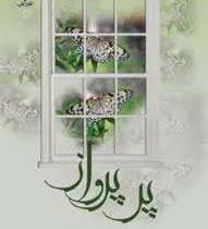 کتاب پر پرواز اثر راضیه حاتمی زاده نشر علی